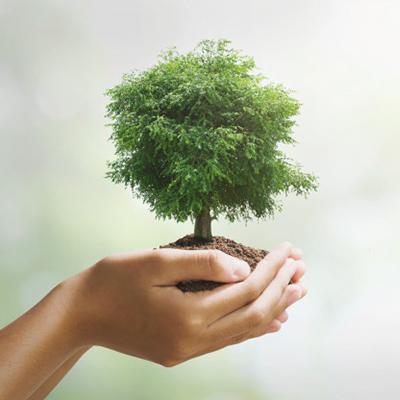 Dia do agente de defesa ambiental